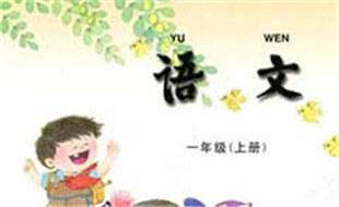 枫叶的拼音与意思